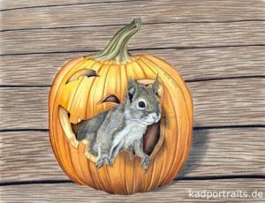 Halloweenhörnchen