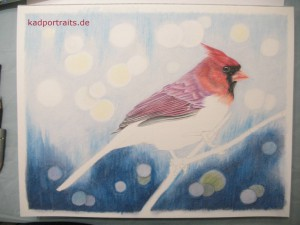 red_cardinal_004